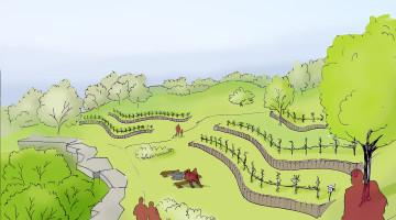 Linnapargi viinapuuaedade visualiseering. Autor Signe Kangur.